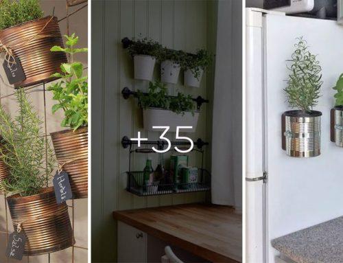 Malá záhradka priamo vo vašej kuchyni. Vaše jedlo bude chutiť vždy čerstvo.