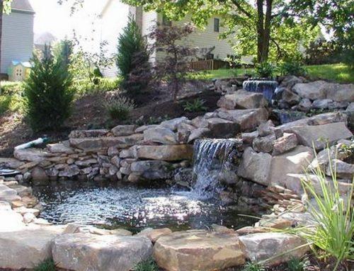 Prírodné jazierko alebo vodopád ako súčasť vašej záhrady. 100 inšpiratívnych nápadov