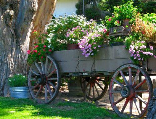 Premeňte starý rebrinák na pýchu vašej záhrady! Pozrite si viac ako 40 fantastických nápadov