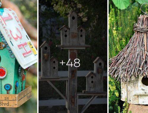 30+ najkreatívnejších nápadov na vtáčie búdky