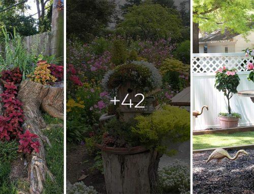 Ako zo starého stromu urobiť jedinečnú ozdobu záhrady