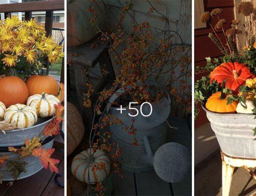 Skočte do pivnice po staré hrnce, stoličky či košíky. Tieto jesenné dekorácie si zamilujete!