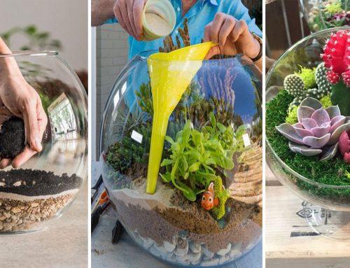 Ako vytvoriť kúzelnú miniatúrnu záhradu, ktorá dodá punc útulnosti do každej domácnosti