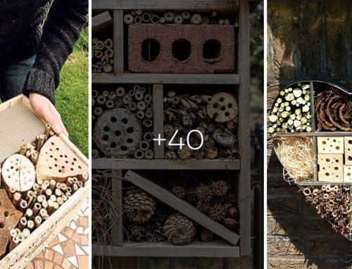 Hotel pre hmyz na záhrade poteší a zároveň je nenahraditeľným pomocníkom v boji proti škodcom