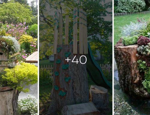 Viete, že aj starý zrezaný strom môžete pretvoriť na pýchu vašej záhrady? Ponúkame vám viac, ako 40 dôkazov!
