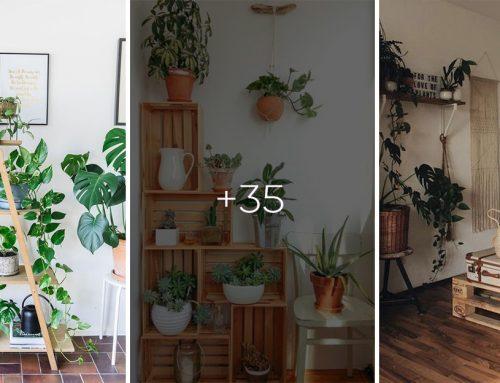 Neviete, kde najlepšie umiestniť izbové rastliny? Pozrite si 35 praktických nápadov a využite váš dom naplno