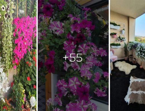 Kvetiny sú korunou krásy každej záhrady. Pozrite si 50+ krásnych kvetinových inšpirácií z vašich balkónov a terás