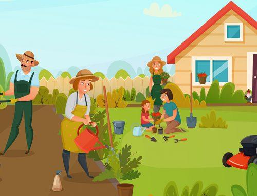 Jeseň v záhrade: Čo urobiť skôr, ako nám zaklope zima na dvere