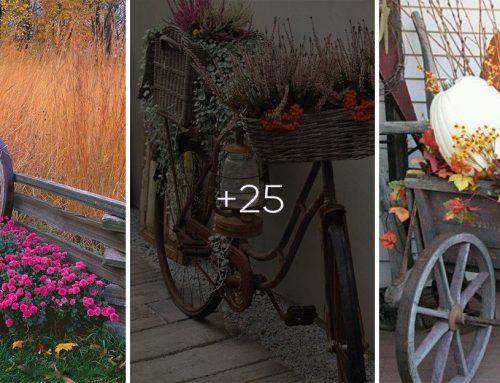 Privítajte jeseň vo svojej záhrade. 25+ fantastických nápadov, ktoré vás budú tešiť