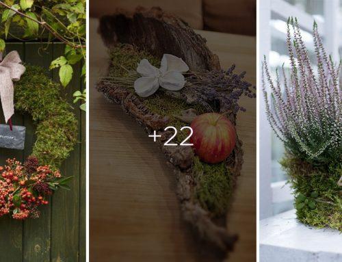 Využite mach k vytvoreniu úžasných jesenných dekorácií: Inšpirujte sa k tvoreniu