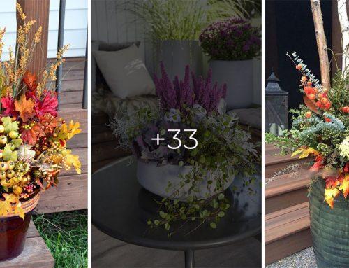 Kvetináče na jeseň rozhodne neschovávajte. Inšpirujte sa a prezlečte ich do jesenného