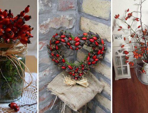Nazbierajte si niekoľko vetvičiek šípok a začnite tvoriť kúzelné jesenné dekorácie